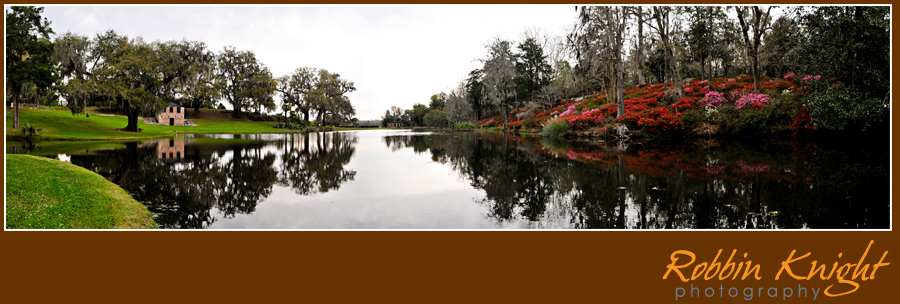 Middleton place gardens pano shot
